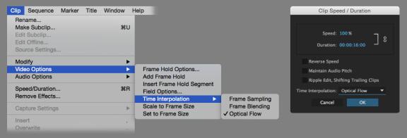 OpticalFlowTimeRemapping_UI